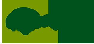 Logo myRecarga